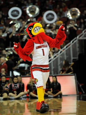 Louie entertains the crowd as the Cardinals take on Miami on Sunday at the KFC Yum! Center. Jan. 15, 2017