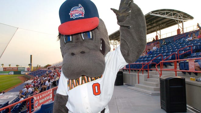 Manny the Manatee will keep the fans entertained during tonight's game at Space Coast Stadium.