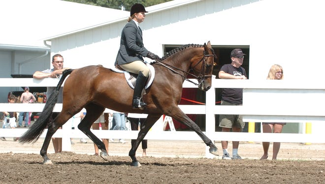 Hunny, born and raised in Chemung County, and Suzy Stafford will compete in Hungary Sept. 25-28.