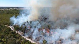 A controlled burn near Sebastian.