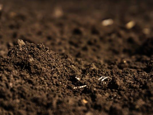 Closeup of a plowed field, fertile, black soil.