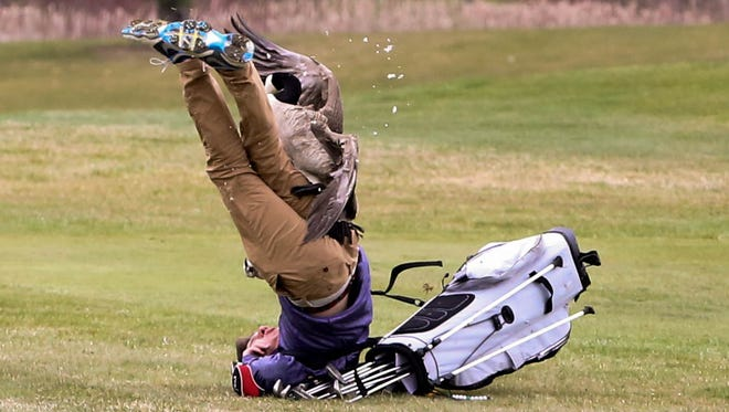 A goose attacks golfer Isaac Couling of Concord High School during the Madison Tournament on Saturday, April 21, 2018, at Wolf Creek Golf Course in Adrian.
