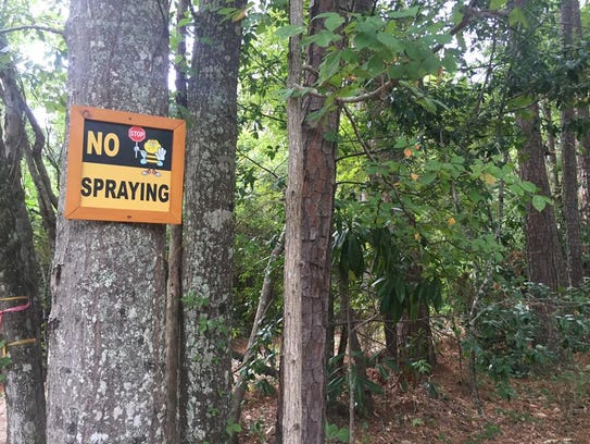 """A sign that says """"No spraying,"""" at the Flowerton Bee"""