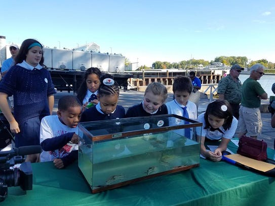 Students from Rochester's Archangel School get up close