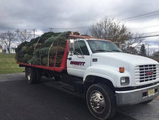 Everitt Farms offer a tree delivery service.