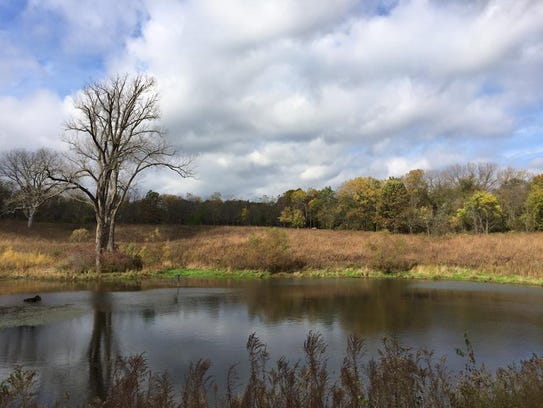 A small lake at F.W. Kent County Parks is shown on