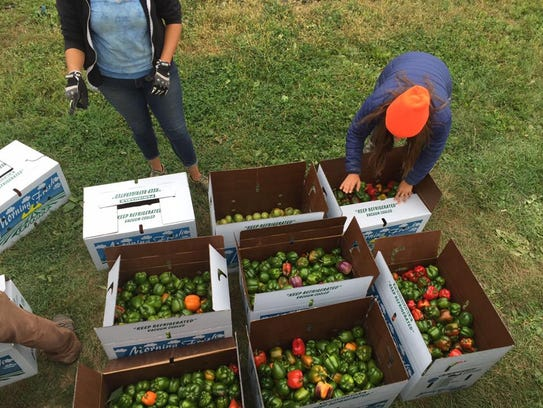 Soup Kitchens That Accept Fresh Food