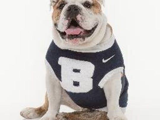 Butler Blue . . . now that's a mascot.