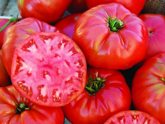 The classic Jersey tomato is a beefsteak, which means it ripens from the center of the tomato out and does not have a core.