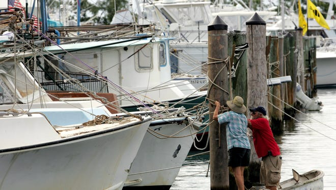 The crash happened in Miami near Dinner Key Marina, pictured here.