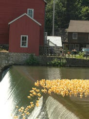 The Great Rubber Ducky Race returns on July 16 to the