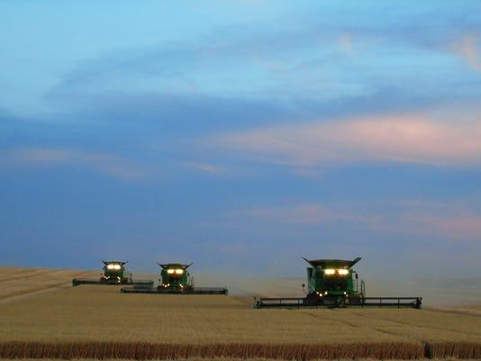 636377212222950411-harvest-2.jpg