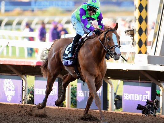 Kentucky_Derby_Brown_Horse_Racing_35529.jpg
