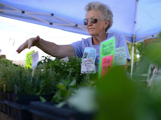 Rita Christman, owner of Christman Gardens, helps a customer at the Saturday Farmers Market in downtown Green Bay on Saturday, June 27, 2015. She's been a regular vendor at at the market for at least 33 years.