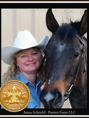 Anna Schriebl is an NAWD Licensed Judge, as well as a Western dressage and traditional dressage trainer.