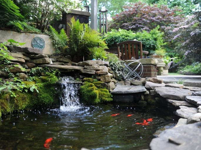 Master Gardener Lisa Phipps' garden has a water feature at her home in Maryville, on Tuesday, May 10, 2016.