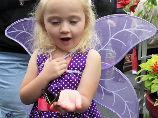 Thursday, April 16, 2011: Butterfly Show: Abigail Zilly,