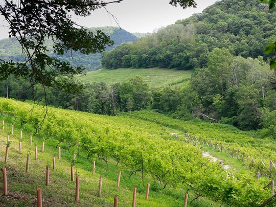 Spectacular views greet visitors at Seven Hawks Vineyards just north of Fountain City.