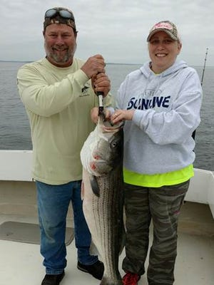 Jay Jamison of Townsend and Ruby Kwoka of Newark teamed up to bring in this 44-inch striper on May 11 while fishing off the Miss Molly charter boat out of Kentmorr Marina on Kent Island, Maryland.