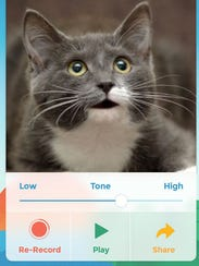 A screenshot of the app My Talking Pet.