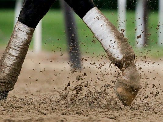 Belmont_Stakes_Horse_Racing_12762.jpg