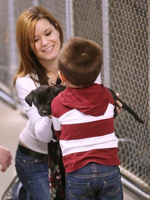 Kayla Moore shows  a puppy to Aiden Rankin at the Animal Services Center. Democrat files Kayla Moore shows off a puppy to Aiden Rankin during a visit to the animal shelter. Kayla Moore shows off a puppy to Aiden Rankin during a visit to the animal Shelter on Saturday. The animal shelter was a hub of activity on Saturday, December 29, as workers readied adoptable dogs and cats for possible new owners.