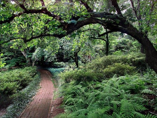 Maclay Gardens has 6 miles of hiking and five mils of biking trails.