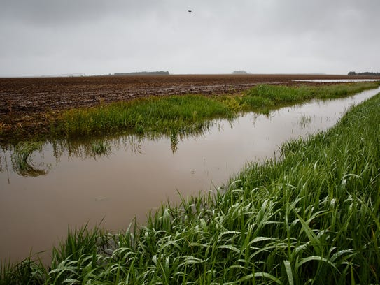 A drainage ditch sits full of water after heavy rains