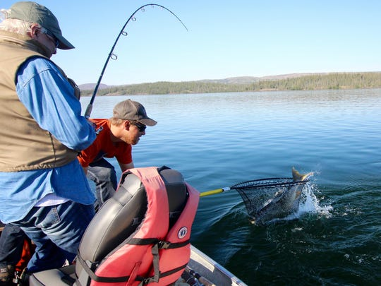Guide Marshall Forster, right, handles the net while Lynn Henning reels the fish in from Great Slave Lake in the Northwest Territories.