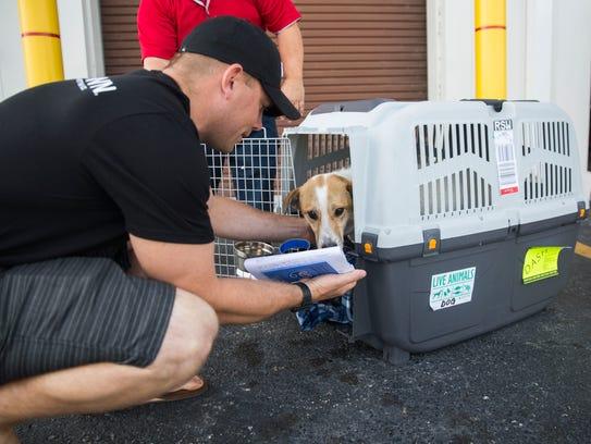 Dog Retirement Home Georgia