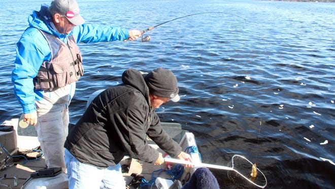 Bill Henry of Cadott nets a walleye for Joe Weiss of Spooner during a fishing outing on Lake Namakagon near Cable on opening day of the 2017 Wisconsin fishing season.