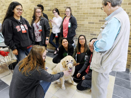 Texas Tech nursing students pet Hendrick therapy dogs Tuesday.