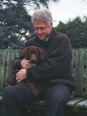 President Bill Clinton with his new Labrador puppy, Buddy, 1997.