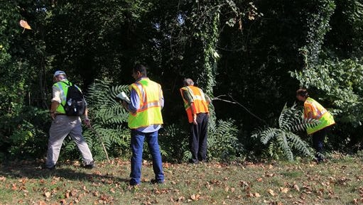 Volunteers search an area along Ivy Road Sunday during a massive search effort by the community to find missing UVa student Hannah Graham.