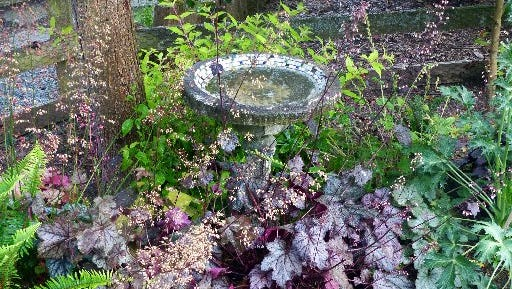 A cluster of heuchera and their assortment of long-blooming flower spikes, provide color and texture against a birdbath, tree and split-rail fence and make for easier, more-efficient watering.