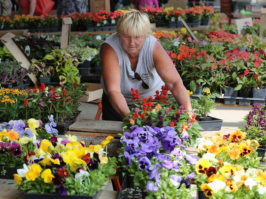 Cindy Chapman of Cindy's Greenhouse in East Troy sets out flowers at the West Allis Farmers Market in 2016.