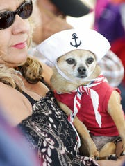 Pictured with her owner Francine Verru, a Chihuahua named Zena is dressed in her best patriotic outfit on Saturday, March 10, 2018, as the United Military Women of the SouthWest (UMWSW) officially dedicate the Women Veterans Monument at Veterans Memorial Park.