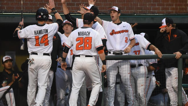 Oregon State players cheer on Caleb Hamilton as the Beavers take on the Ducks on Tuesday, May 19, 2015, at Goss Stadium in Corvallis.