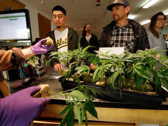 EPA USA CALIFORNIA LEGALIZED MARIJUANA EBF AGRICULTURE LEISURE CONSUMER GOODS USA CA