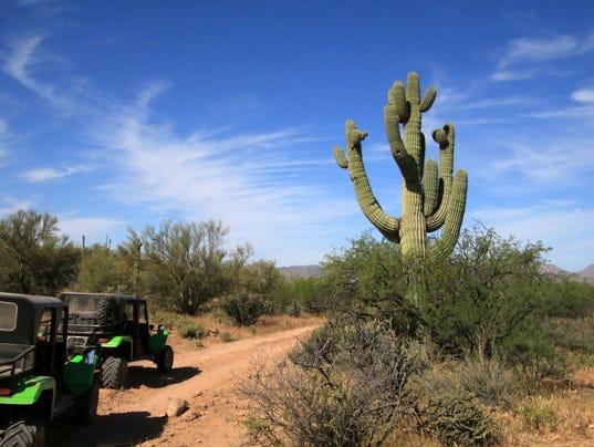 Green Zebra Desert Jeep Tour