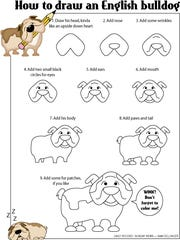 how-to-draw-a-bulldog
