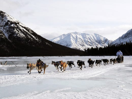 Four-time Iditarod champion Martin Buser leaves the Rohn checkpoint in Alaska during the Iditarod Trail Sled Dog Race on Tuesday.