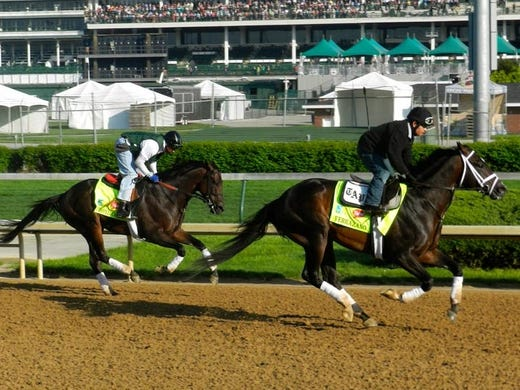 Unbeaten Verrazano (front) and Itsmyluckyday work out in preparation for the Kentucky Derby.