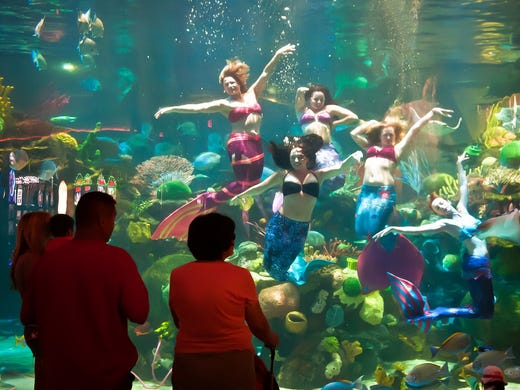 Free things to do in 10 great cities for Plenty of fish las vegas