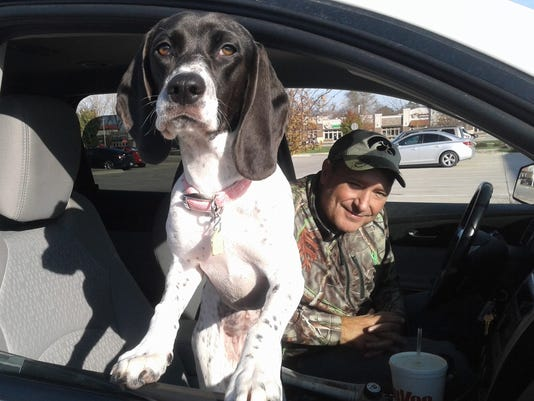 Rescue dogs in cars