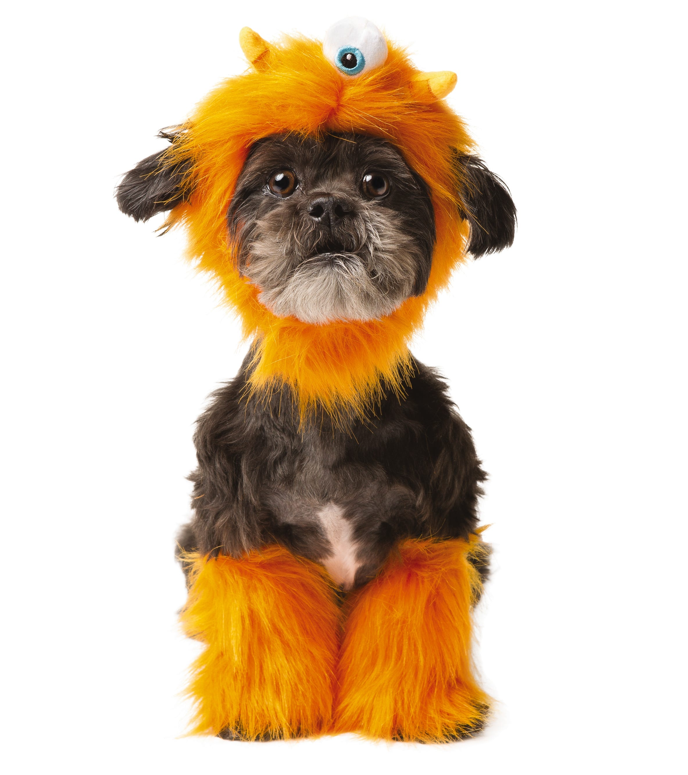 sc 1 st  USA Today & PetSmart Halloween costumes to dress your dog or cat