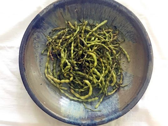 acres16--toasted radish pods