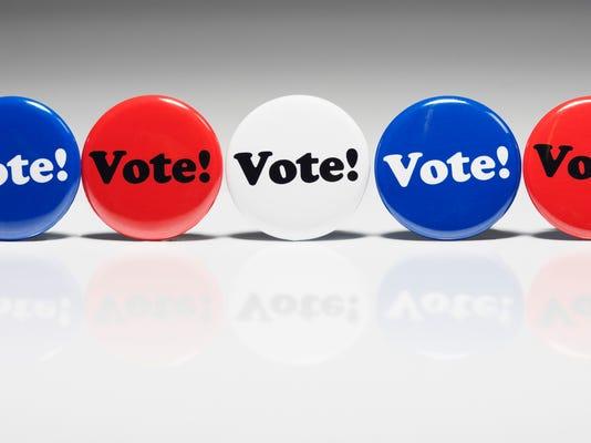 vote1 (31).jpg