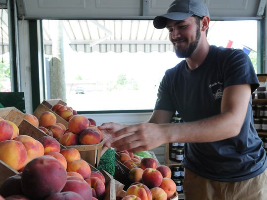 Ryan Smack, assistant manager at Harris Market stocks peaches on Thursday, Aug. 4.