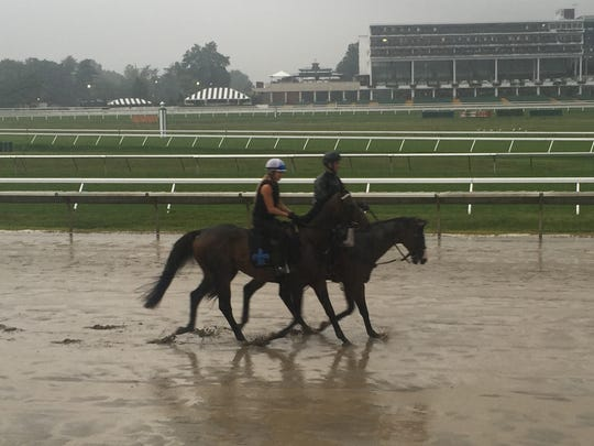 Exaggerator walked over the sloppy Monmouth Park track Friday morning in the rain in preparation for the $1 million betfair.com Haskell Invitational, which will be run Sunday at Monmouth Park.